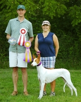 BEST Of BREED ... ASFA Lure Coursing