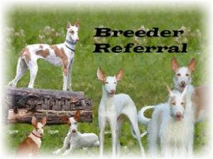 Breeder Referral